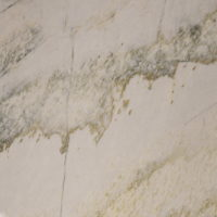 Macabus-white-full